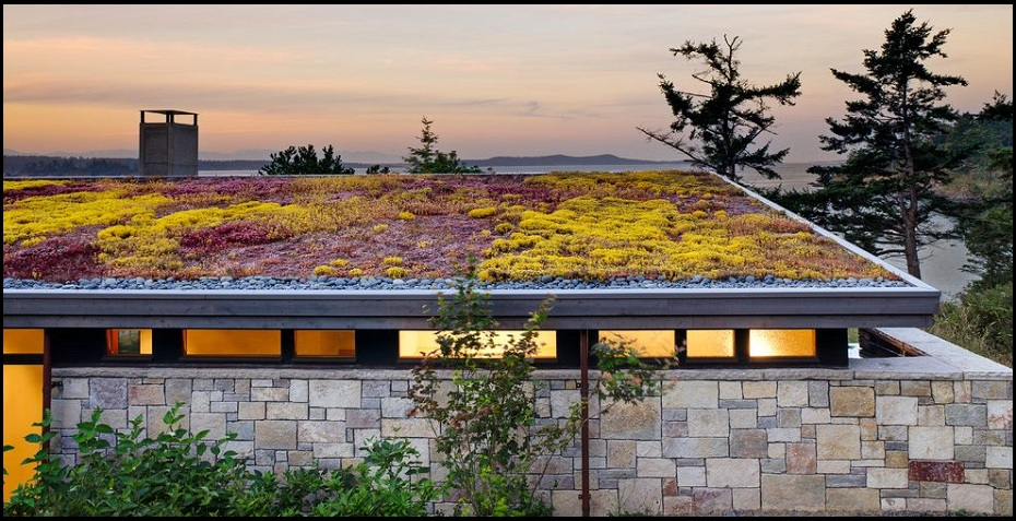 Christchurch Green Roof / Living Roof Services.